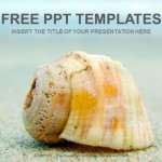 Sand-Sell-Nature-PowerPoint-Templates (1)