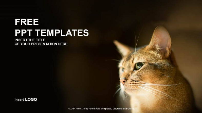 Reddish-Kitty-Nature-PPT-Templates (1)
