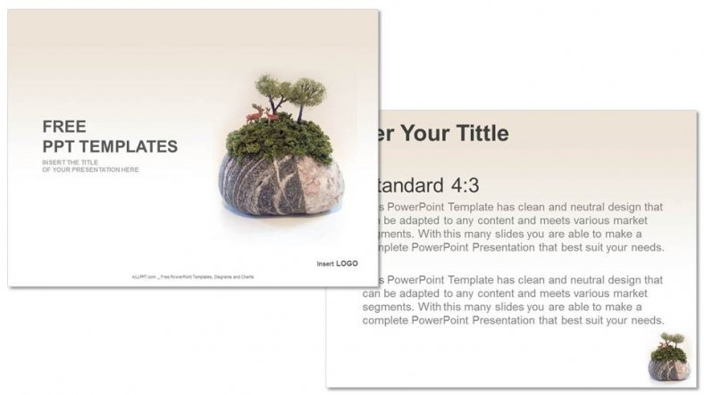viewing-stone-Nature-PPT-Templates (3)