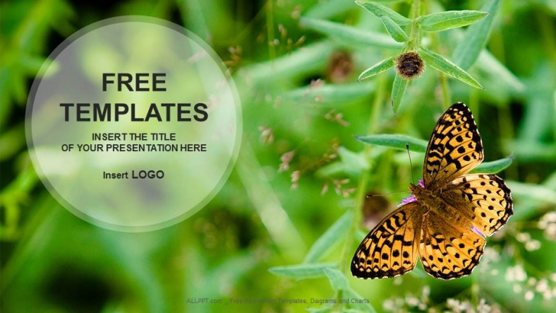 Butterfly-on-Flower-Nature-PowerPoint-Templates (1)
