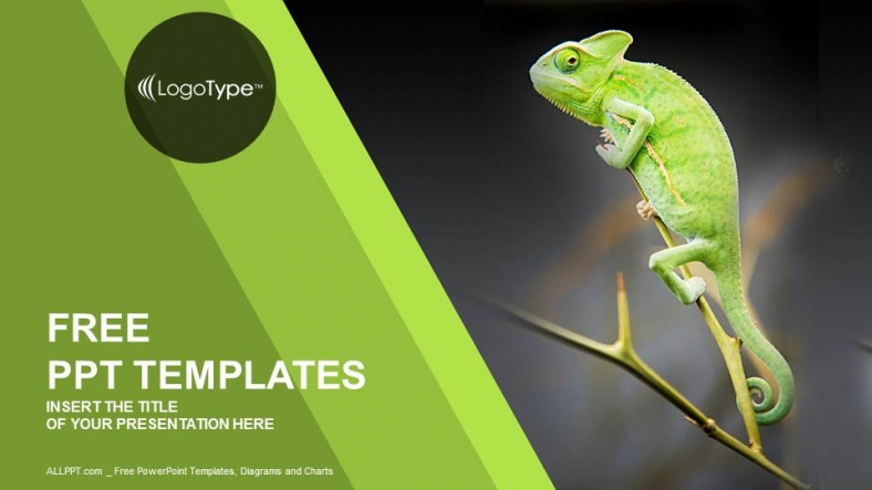 Chameleon-Sitting-on-Green-Plant-Nature-PPT-Templates (1)
