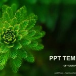 Water-Plant-Nature-PowerPoint-Templates (1)