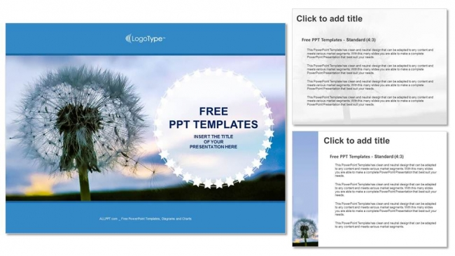 Dandelion-seeds-PowerPoint-Templates (4)