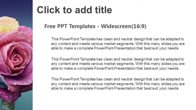 Multi-Colors-Rose-PowerPoint-Templates (3)