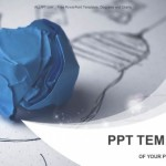 Crumpled-paper-light-bulb-PowerPoint-Templates (1)