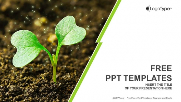 Young plant sprouting powerpoint templates toneelgroepblik Image collections