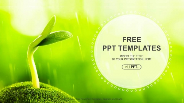 Young sprout in springtime nature powerpoint templates toneelgroepblik