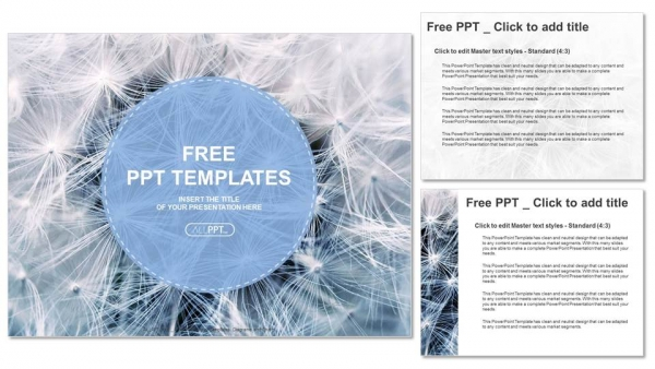 Black and white dandelion seeds with natural background PowerPoint Templates (4)