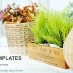small plant pot displayed PowerPoint Templates  (1)