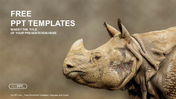 Rhino rhinoceros head shot powerpoint templates toneelgroepblik