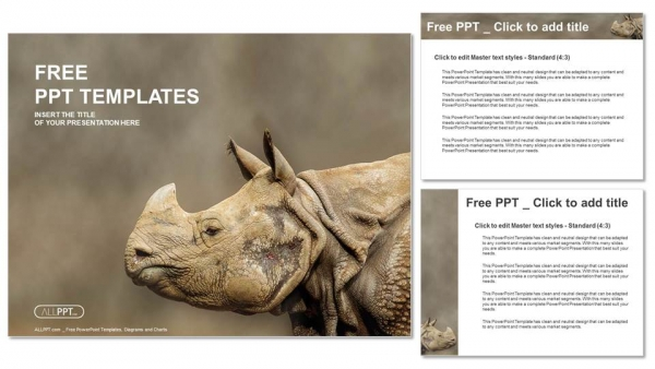 Rhino, Rhinoceros head shot PowerPoint Templates (4)