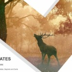 Wild forest landscape of a red deer in the mist PowerPoint Templates (1)