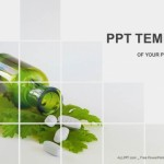 Medicine herb and Herbal pills PowerPoint Templates (1)